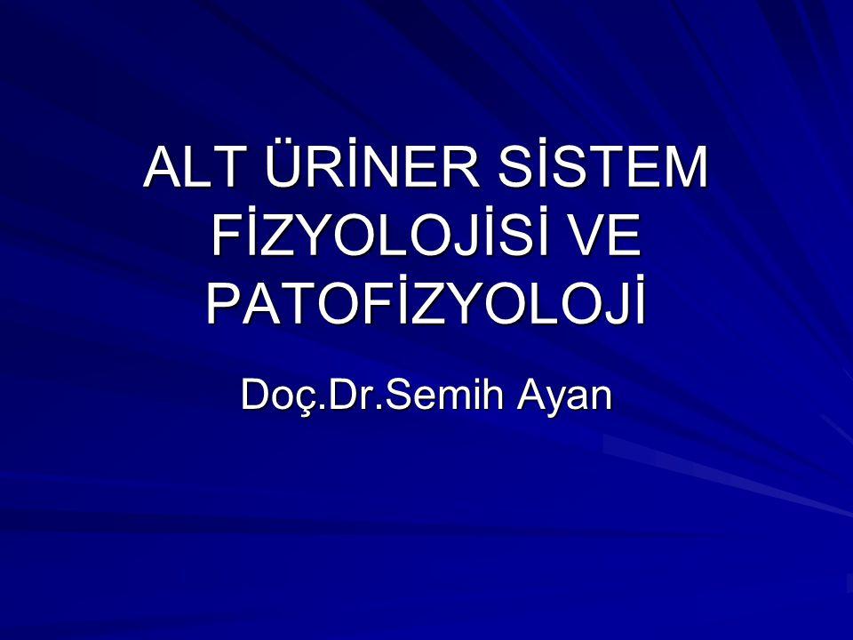 ALT ÜRİNER SİSTEM FİZYOLOJİSİ VE PATOFİZYOLOJİ