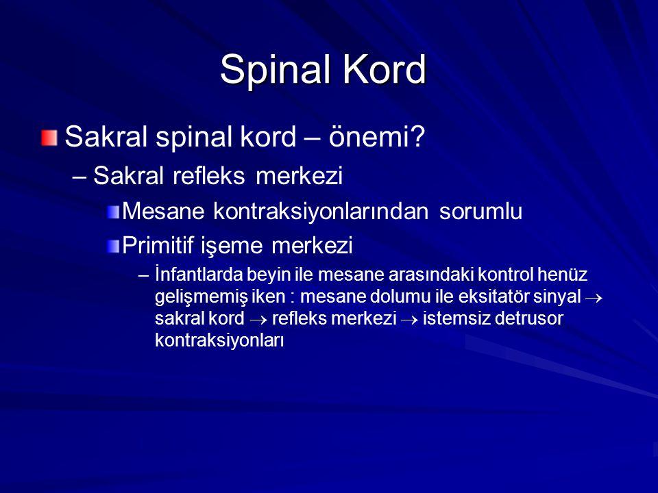 Spinal Kord Sakral spinal kord – önemi Sakral refleks merkezi