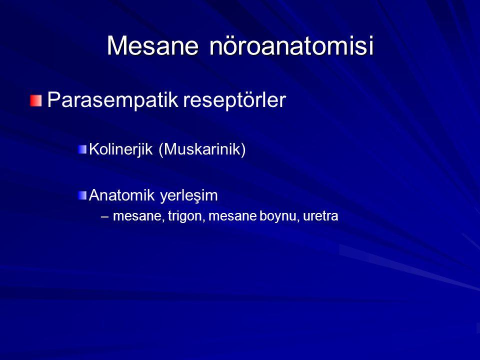 Mesane nöroanatomisi Parasempatik reseptörler Kolinerjik (Muskarinik)