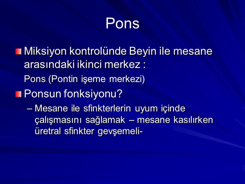 Pons Miksiyon kontrolünde Beyin ile mesane arasındaki ikinci merkez :