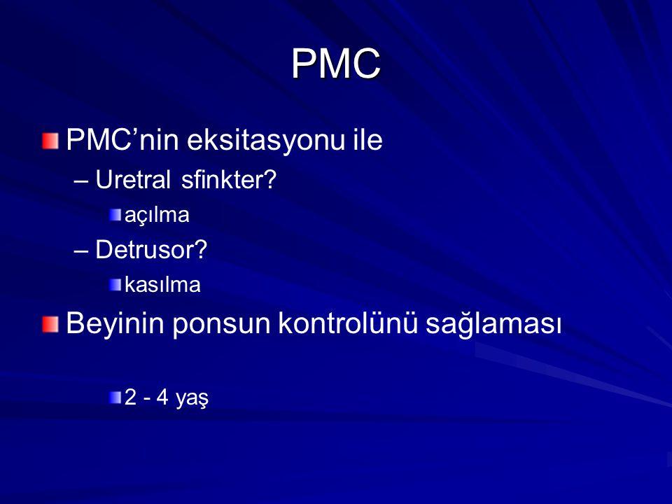 PMC PMC'nin eksitasyonu ile Beyinin ponsun kontrolünü sağlaması