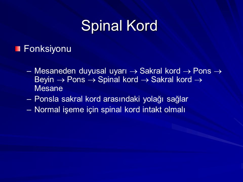 Spinal Kord Fonksiyonu