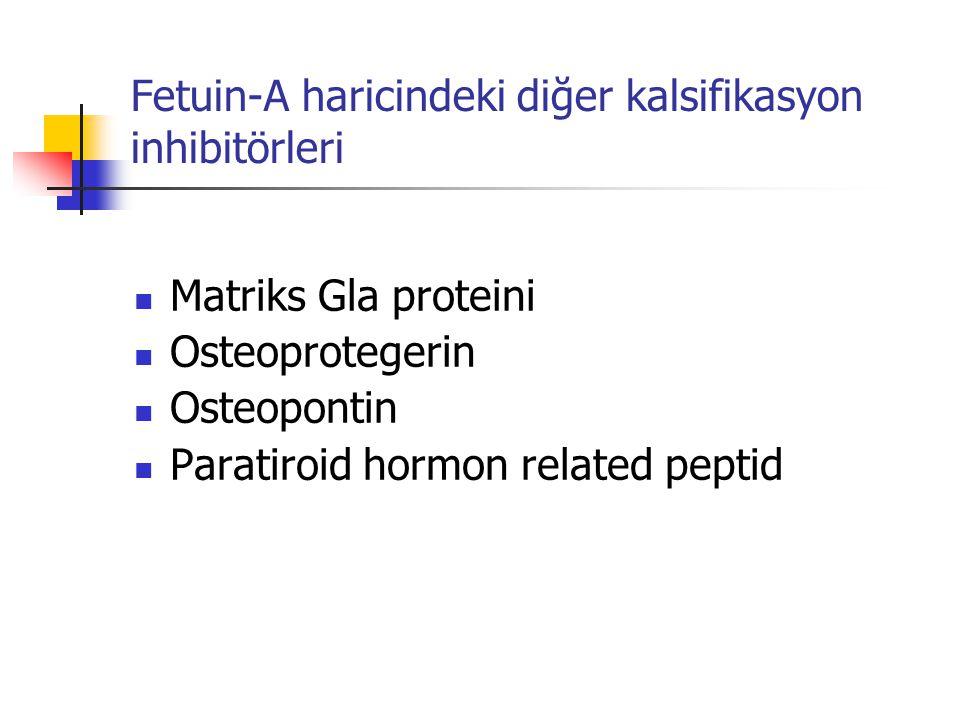 Fetuin-A haricindeki diğer kalsifikasyon inhibitörleri