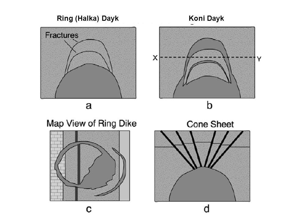 Ring (Halka) Dayk Koni Dayk