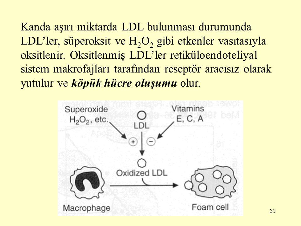 Kanda aşırı miktarda LDL bulunması durumunda LDL'ler, süperoksit ve H2O2 gibi etkenler vasıtasıyla oksitlenir.