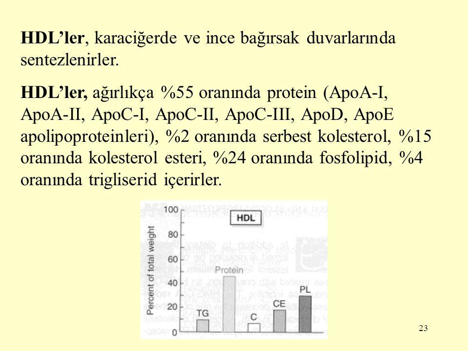 HDL'ler, karaciğerde ve ince bağırsak duvarlarında sentezlenirler.