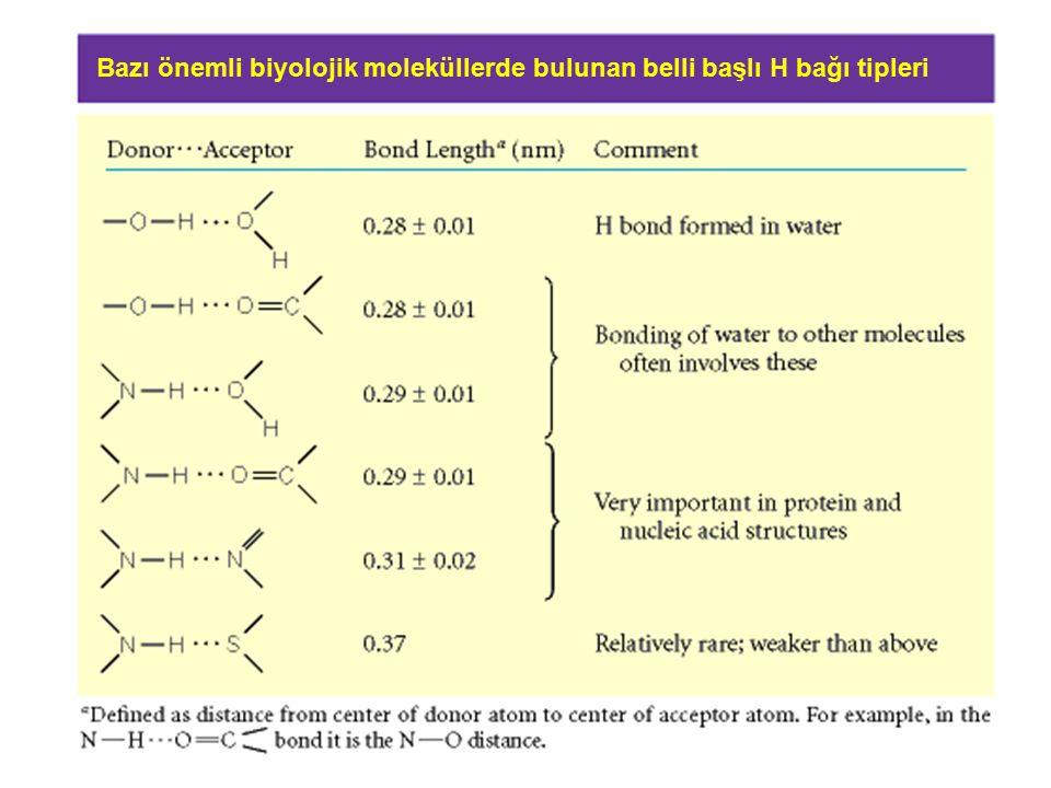 Bazı önemli biyolojik moleküllerde bulunan belli başlı H bağı tipleri