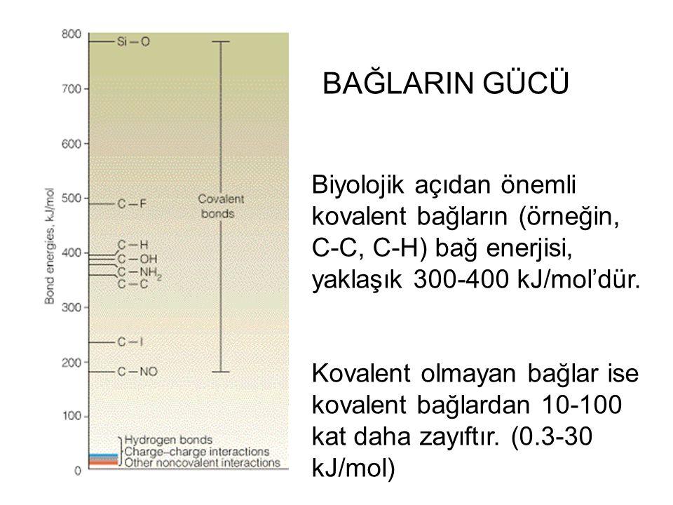 BAĞLARIN GÜCÜ Biyolojik açıdan önemli kovalent bağların (örneğin, C-C, C-H) bağ enerjisi, yaklaşık 300-400 kJ/mol'dür.