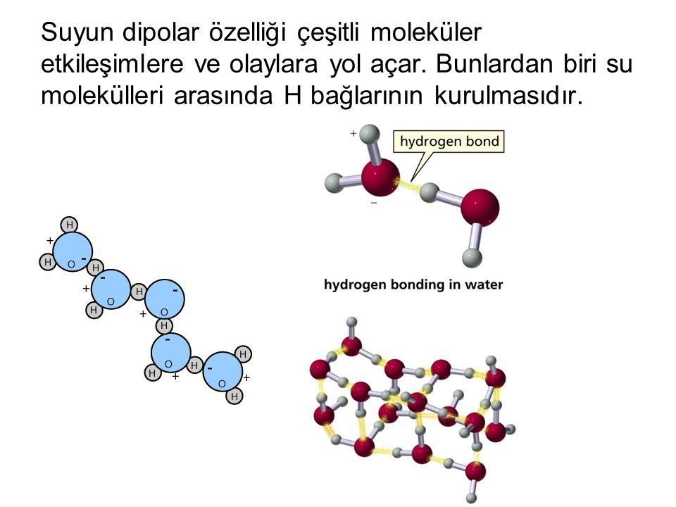 Suyun dipolar özelliği çeşitli moleküler etkileşimlere ve olaylara yol açar.