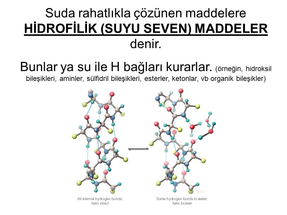 Suda rahatlıkla çözünen maddelere HİDROFİLİK (SUYU SEVEN) MADDELER denir.
