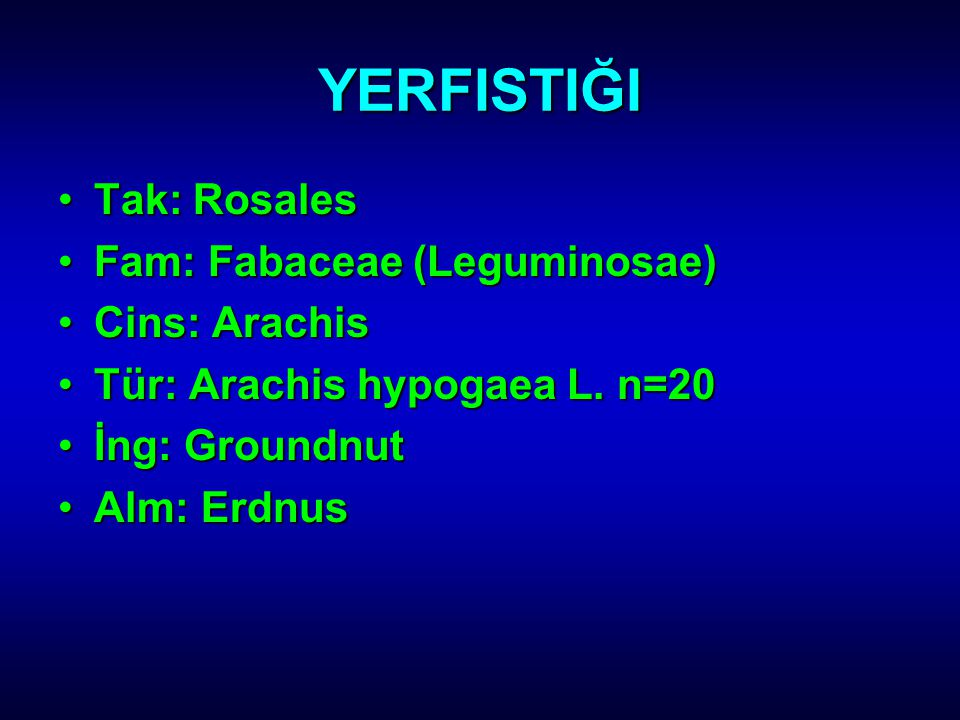 YERFISTIĞI Tak: Rosales Fam: Fabaceae (Leguminosae) Cins: Arachis