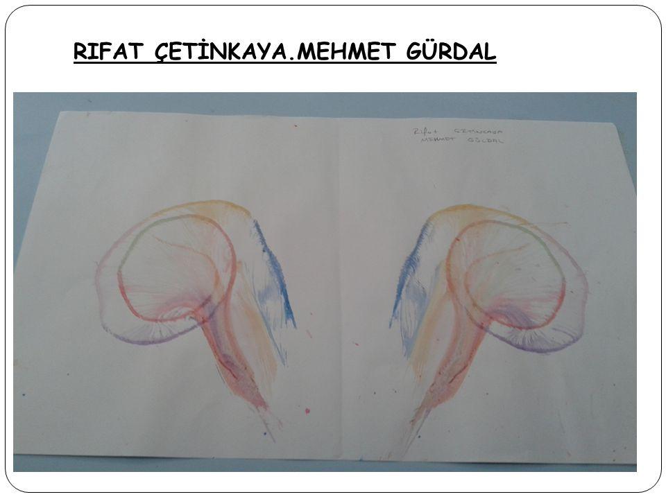 RIFAT ÇETİNKAYA.MEHMET GÜRDAL