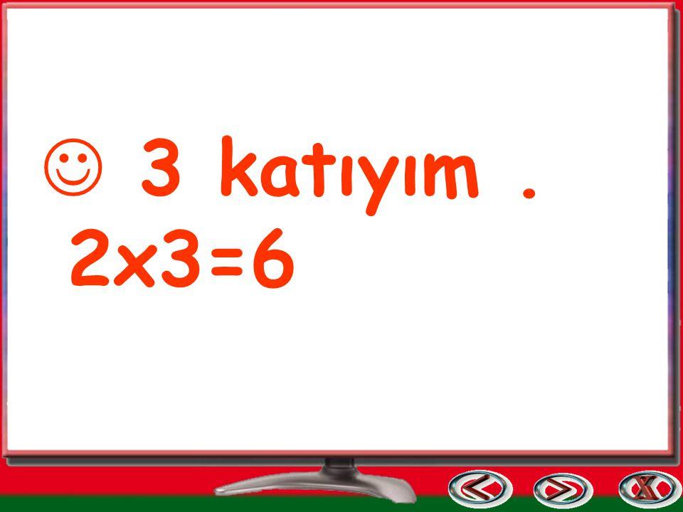 3 katıyım . 2x3=6