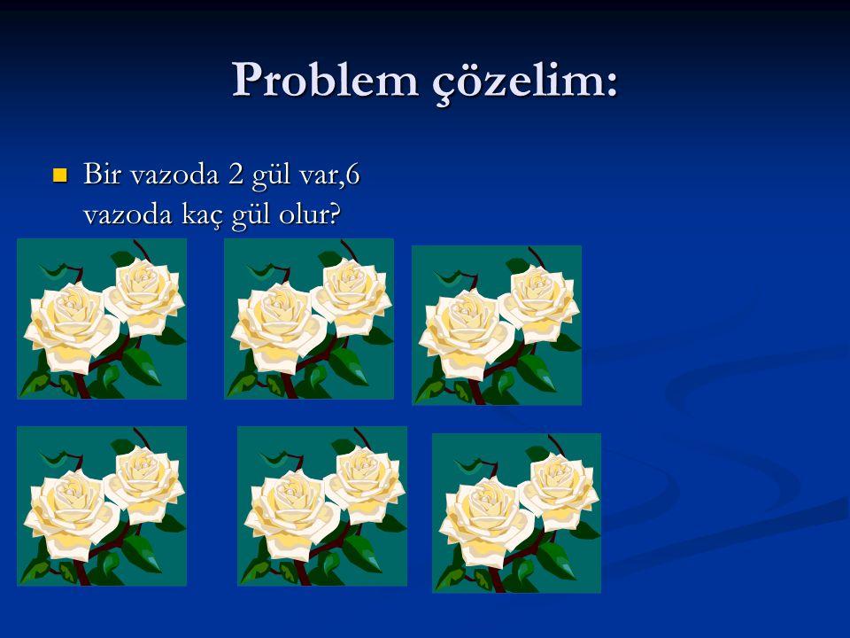 Problem çözelim: Bir vazoda 2 gül var,6 vazoda kaç gül olur