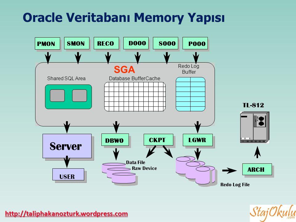 Oracle Veritabanı Memory Yapısı