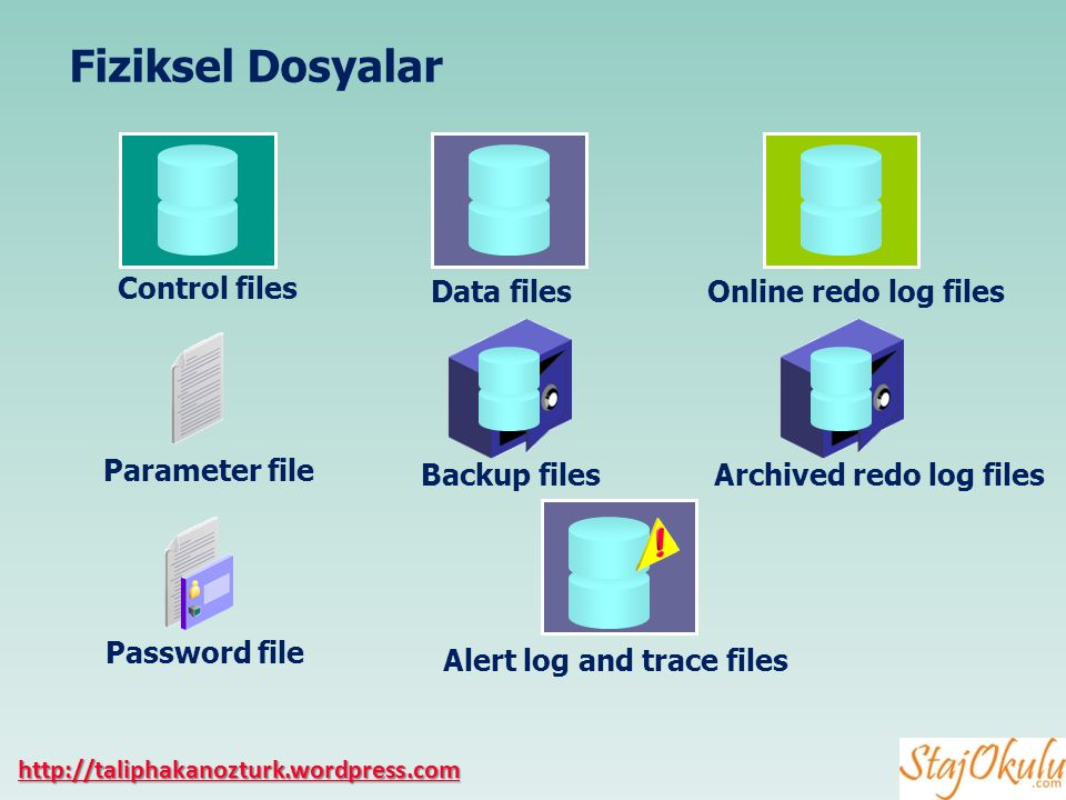 Fiziksel Dosyalar Control files Data files Online redo log files