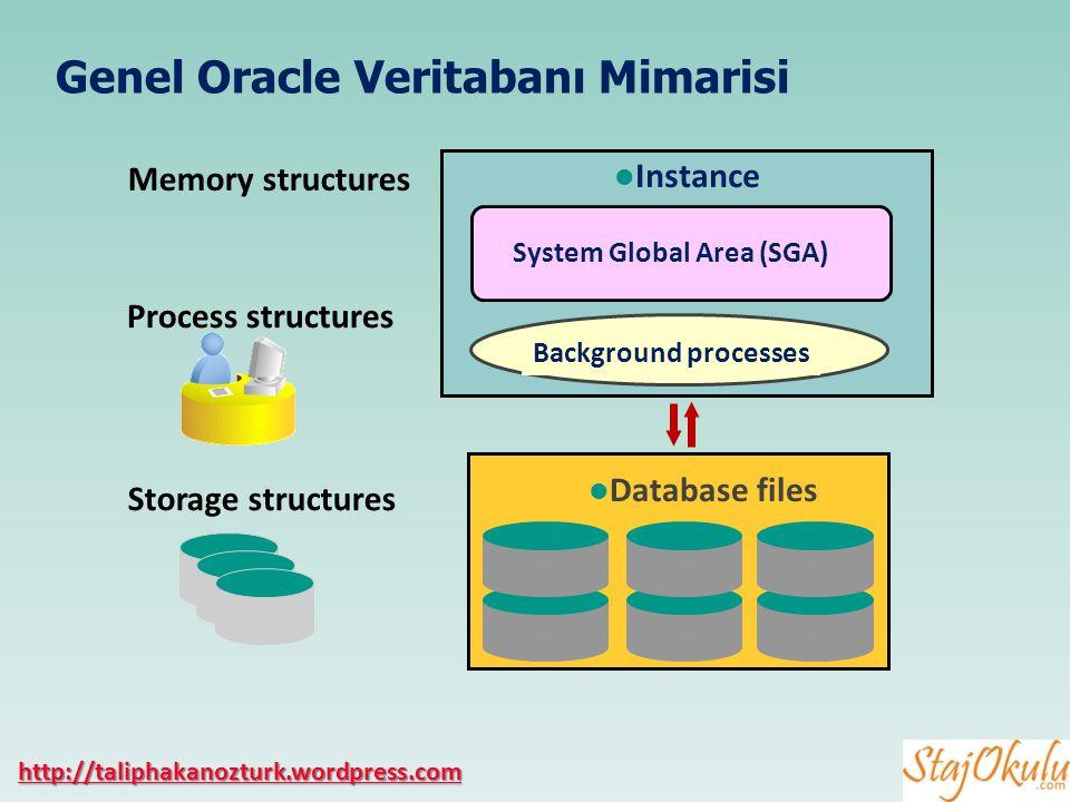 Genel Oracle Veritabanı Mimarisi