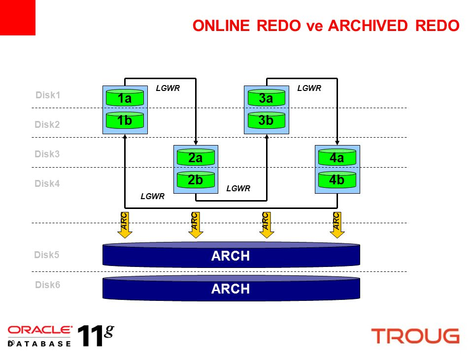 ONLINE REDO ve ARCHIVED REDO