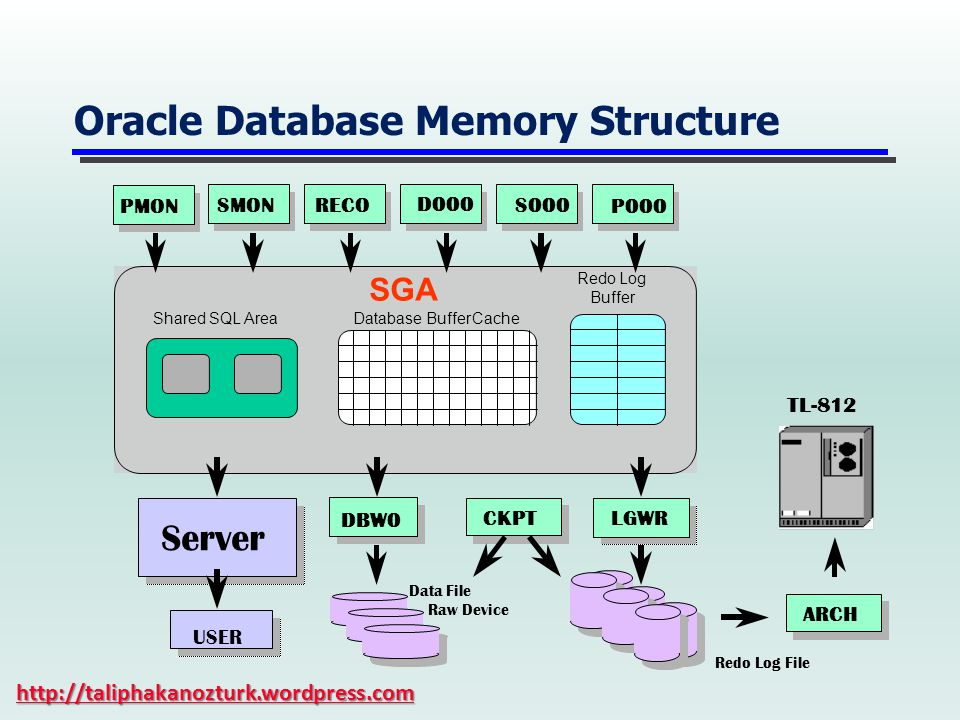 Oracle Database Memory Structure