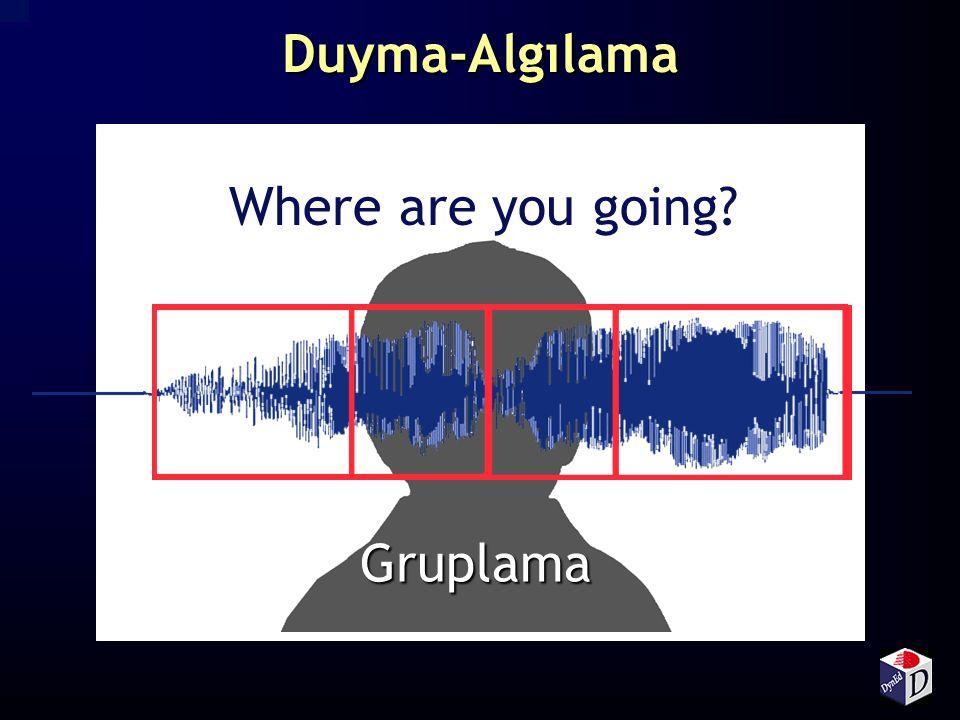 Duyma-Algılama Where are you going Gruplama 2 3
