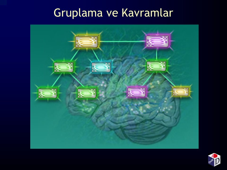 Gruplama ve Kavramlar Language chunks are built around concepts and functions, not grammar.