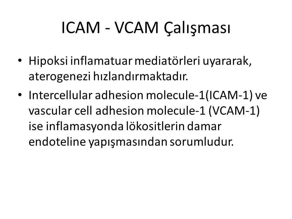 ICAM - VCAM Çalışması Hipoksi inflamatuar mediatörleri uyararak, aterogenezi hızlandırmaktadır.