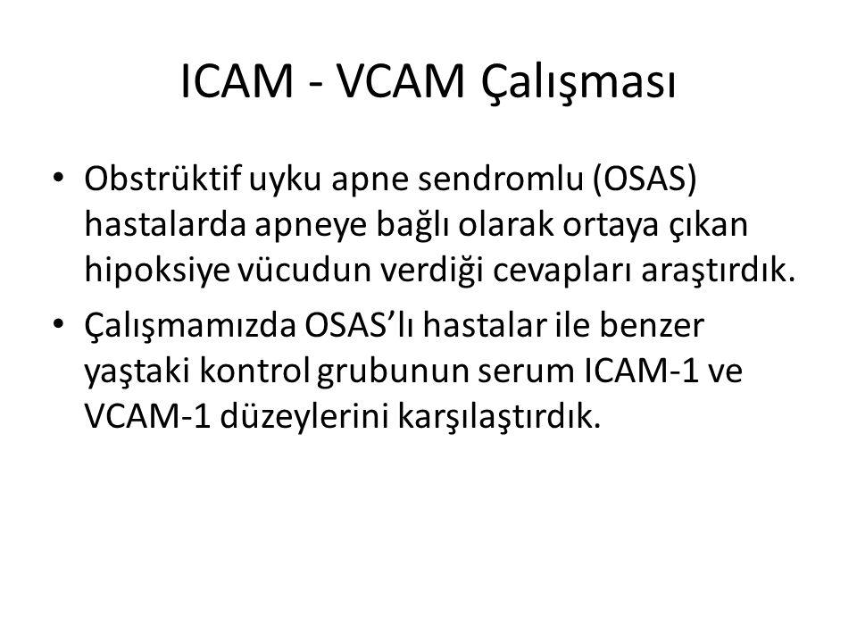 ICAM - VCAM Çalışması