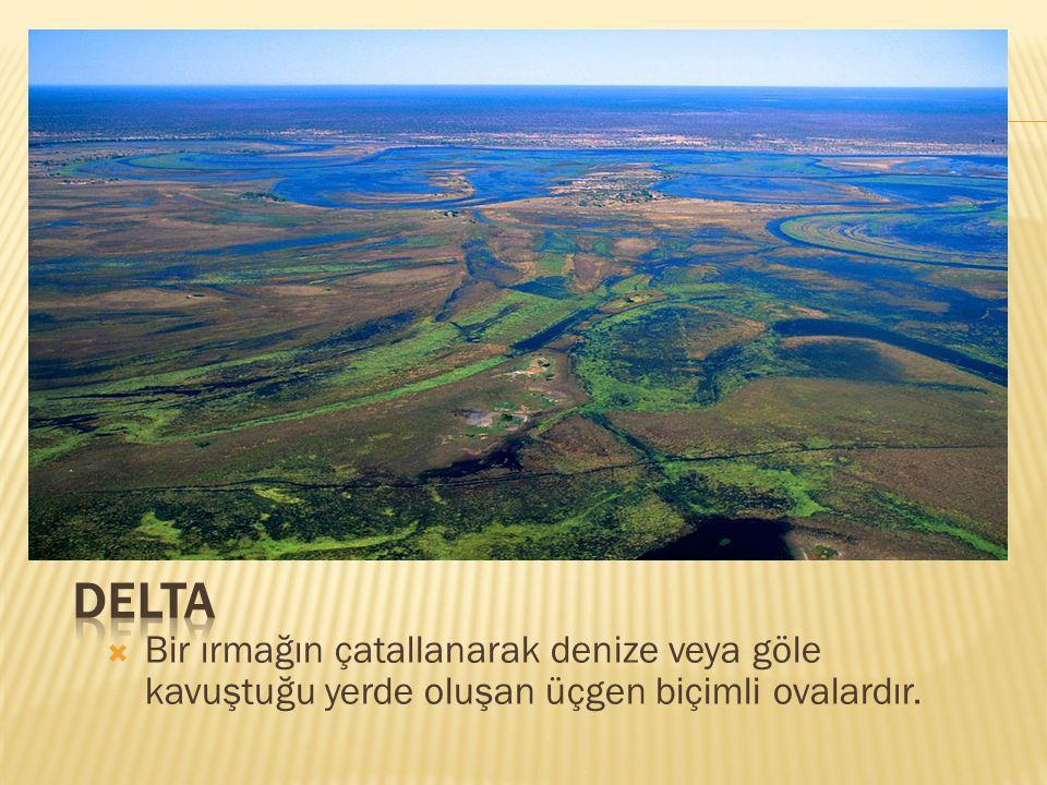 Delta Bir ırmağın çatallanarak denize veya göle kavuştuğu yerde oluşan üçgen biçimli ovalardır.