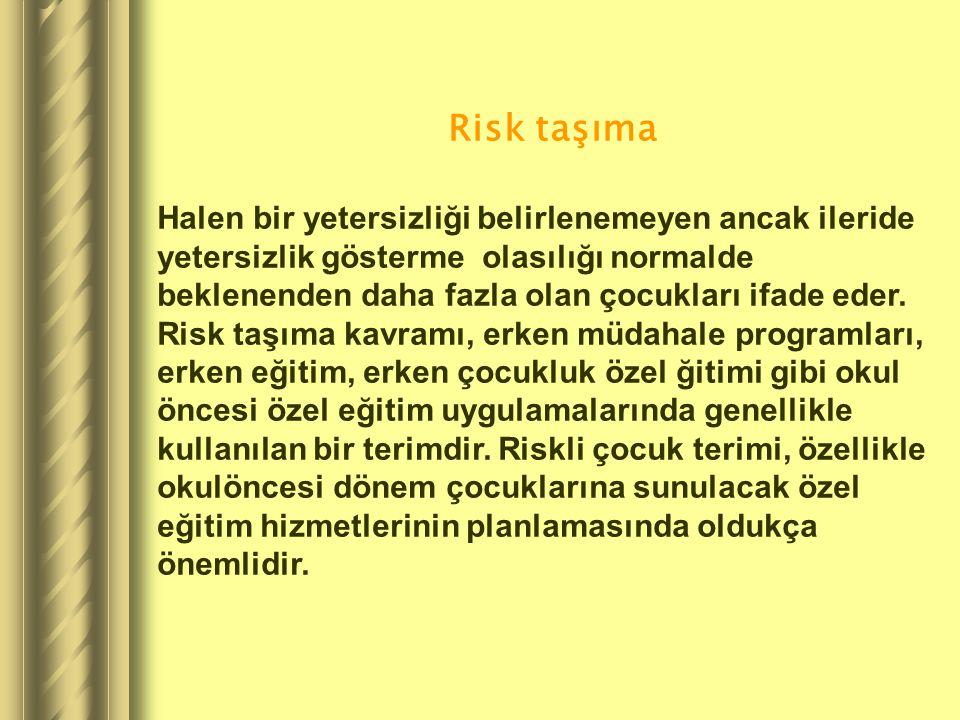 Risk taşıma