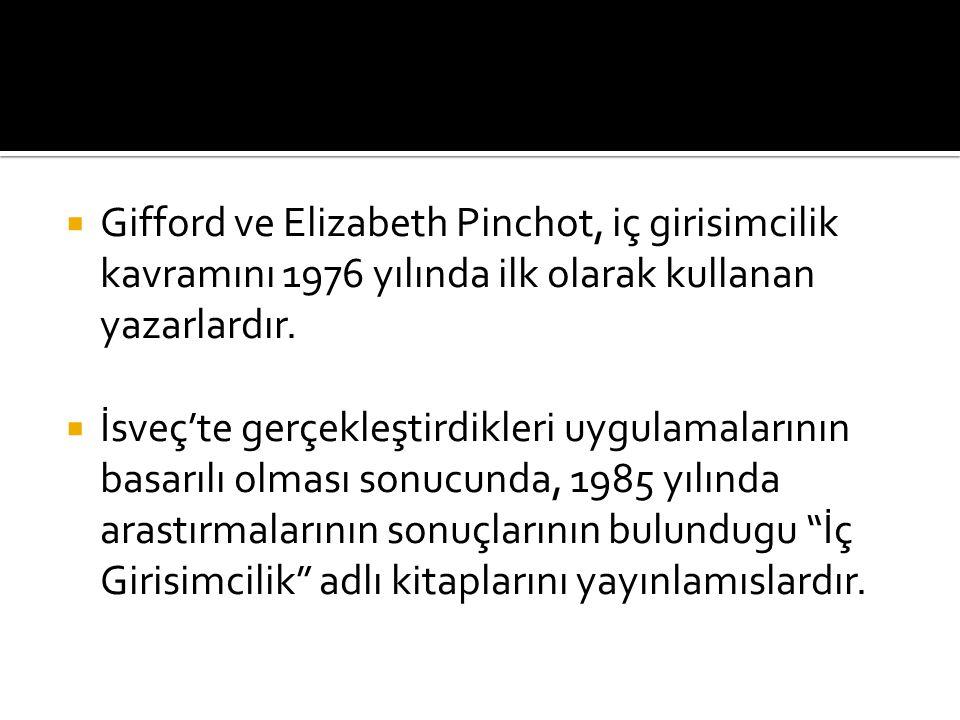 Gifford ve Elizabeth Pinchot, iç girisimcilik kavramını 1976 yılında ilk olarak kullanan yazarlardır.