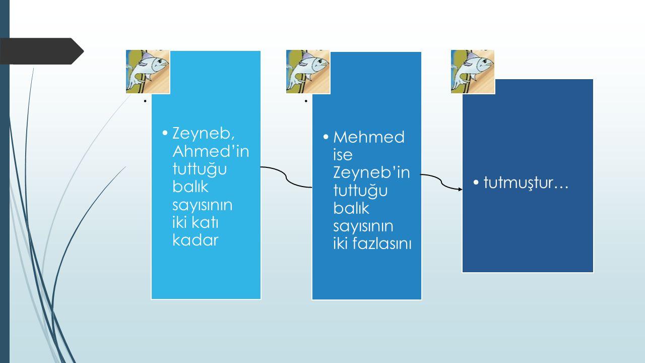 . Zeyneb, Ahmed'in tuttuğu balık sayısının iki katı kadar