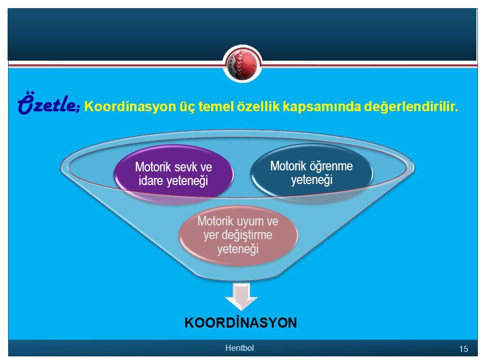 Özetle; Koordinasyon üç temel özellik kapsamında değerlendirilir.