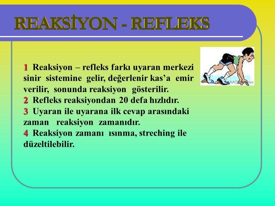 1 Reaksiyon – refleks farkı uyaran merkezi sinir sistemine gelir, değerlenir kas'a emir verilir, sonunda reaksiyon gösterilir.
