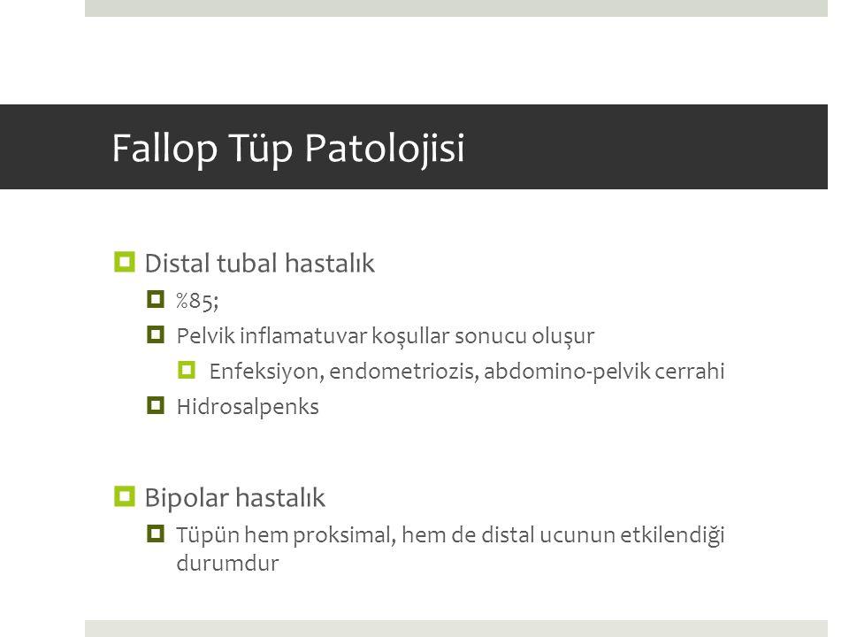 Fallop Tüp Patolojisi Distal tubal hastalık Bipolar hastalık %85;