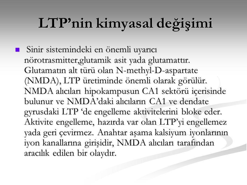 LTP'nin kimyasal değişimi