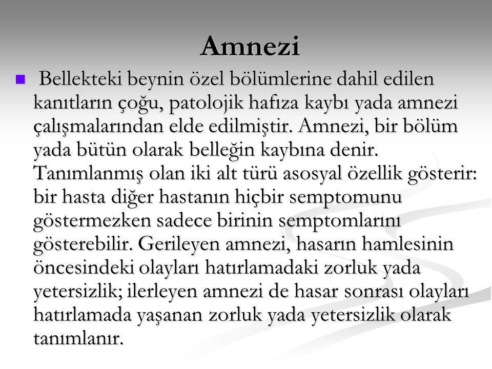 Amnezi