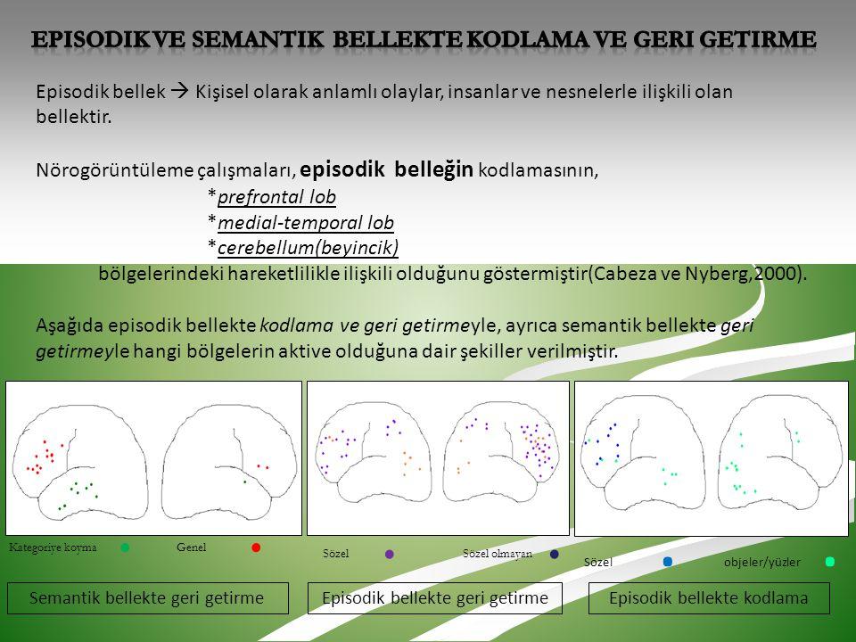 Episodik ve semantik bellekte kodlama ve geri getirme