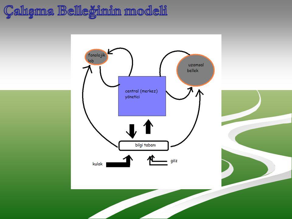 Çalışma Belleğinin modeli