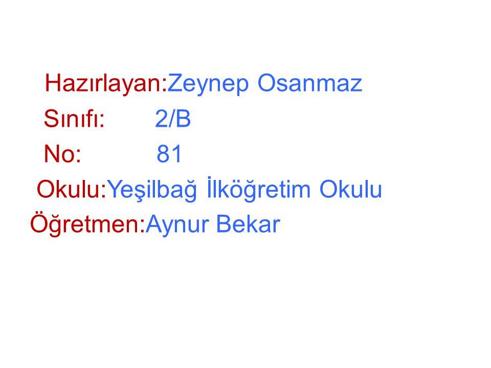 Okulu:Yeşilbağ İlköğretim Okulu Öğretmen:Aynur Bekar