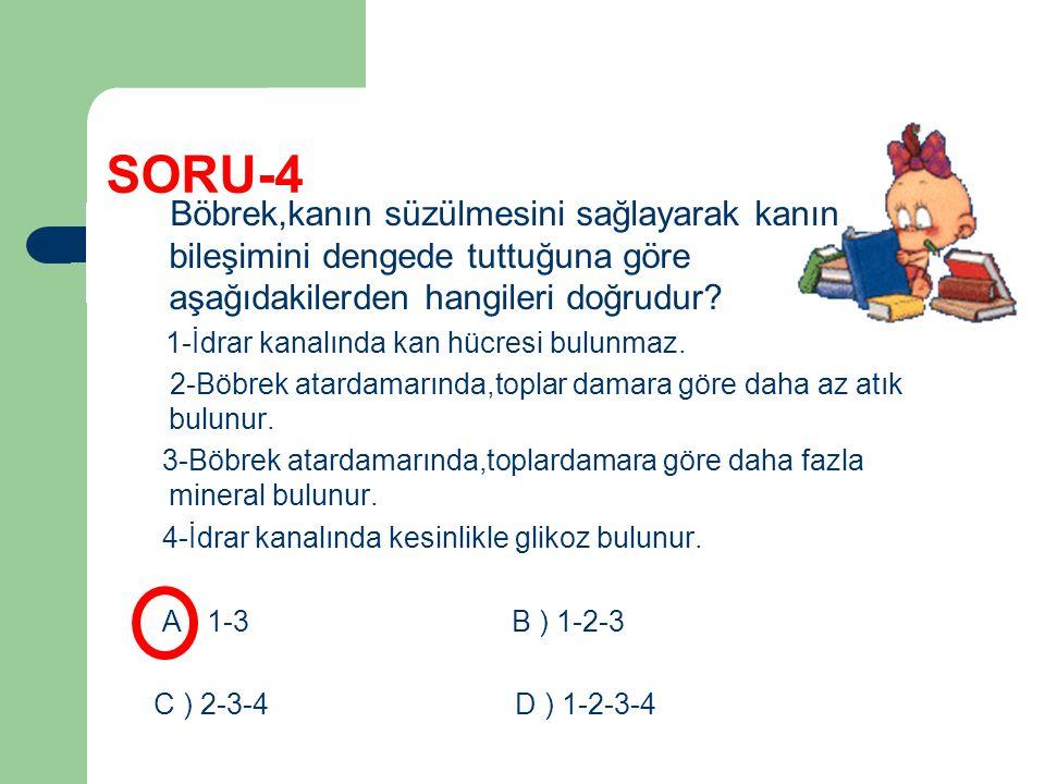 SORU-4 Böbrek,kanın süzülmesini sağlayarak kanın bileşimini dengede tuttuğuna göre aşağıdakilerden hangileri doğrudur