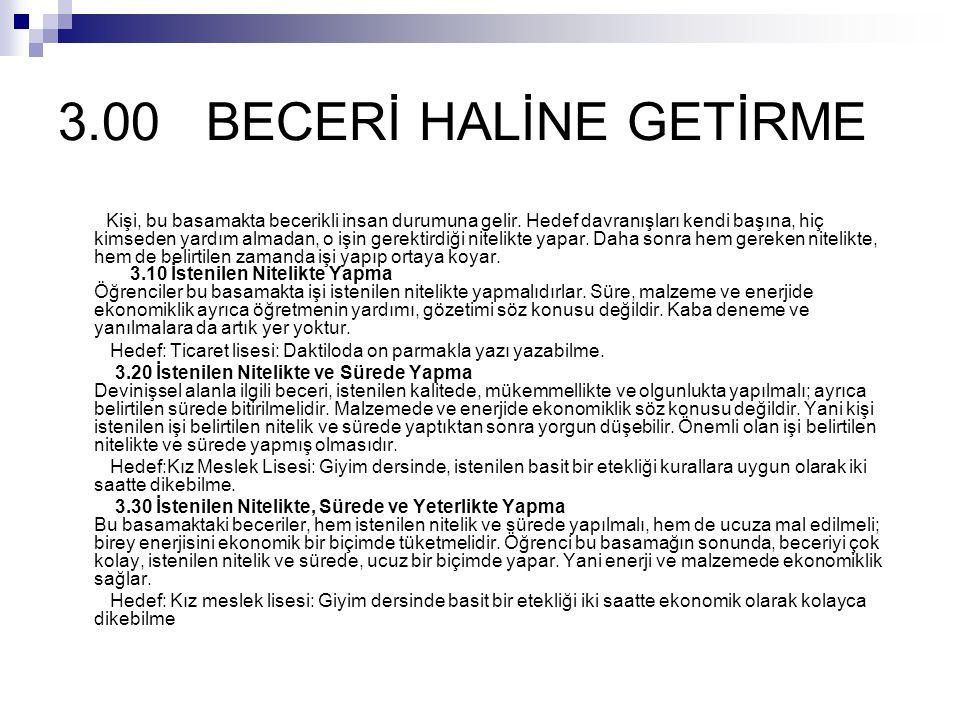3.00 BECERİ HALİNE GETİRME