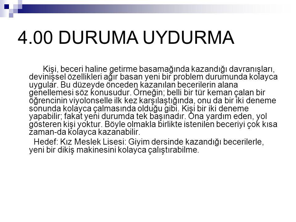 4.00 DURUMA UYDURMA
