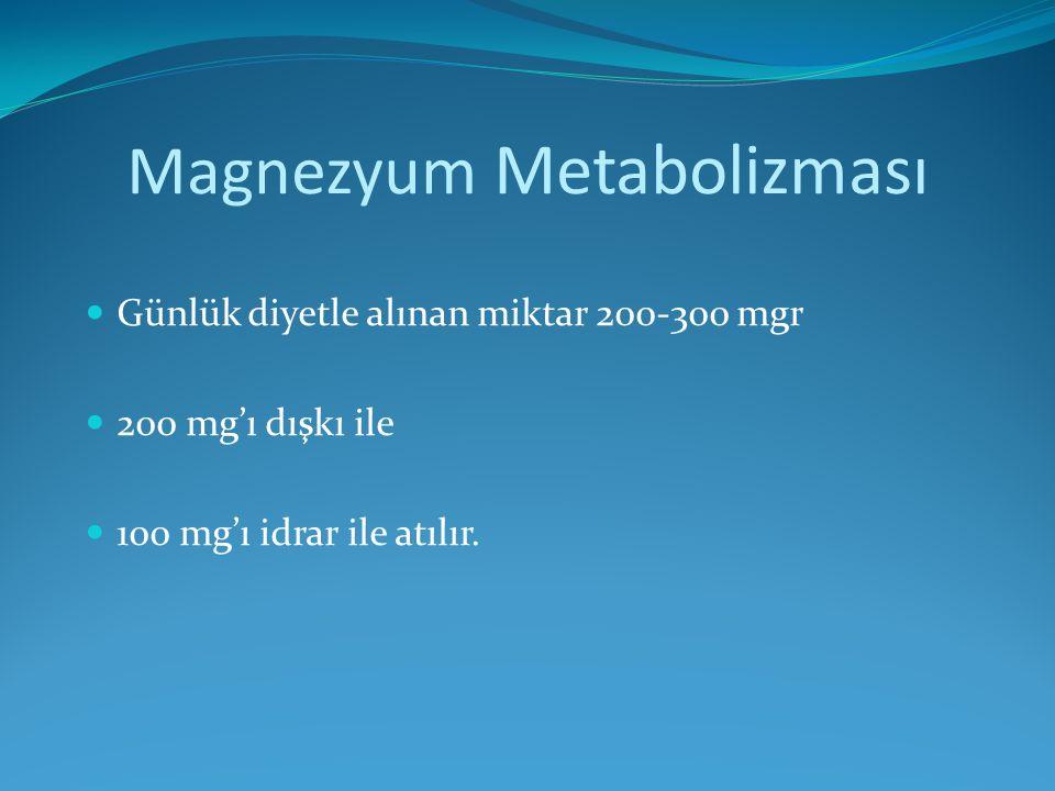 Magnezyum Metabolizması