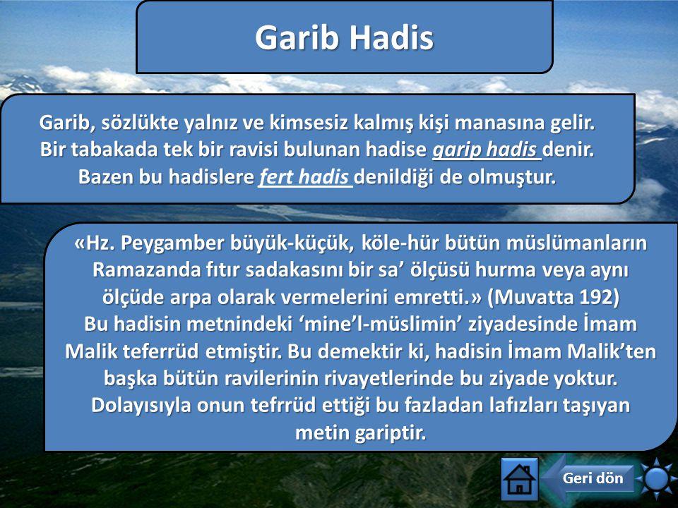 Garib Hadis Garib, sözlükte yalnız ve kimsesiz kalmış kişi manasına gelir. Bir tabakada tek bir ravisi bulunan hadise garip hadis denir.