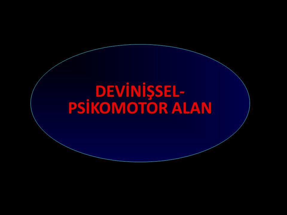 DEVİNİŞSEL-PSİKOMOTOR ALAN