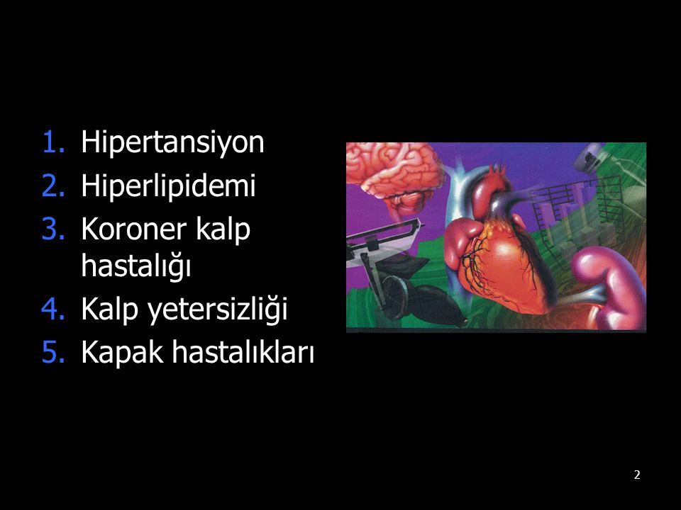 Hipertansiyon Hiperlipidemi Koroner kalp hastalığı Kalp yetersizliği Kapak hastalıkları