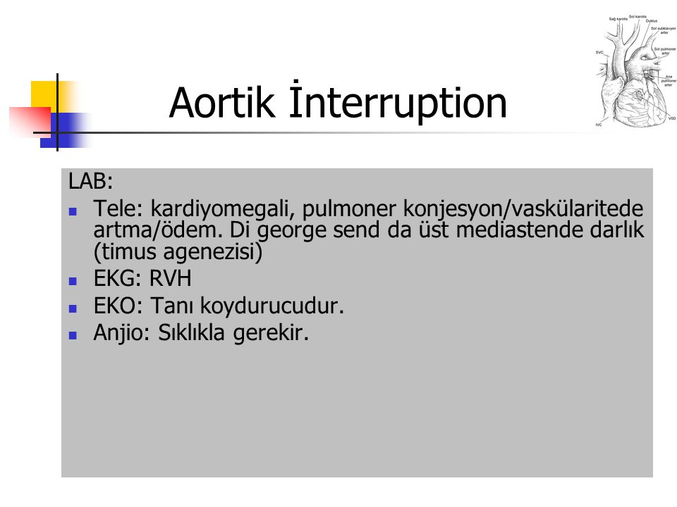 Aortik İnterruption LAB: