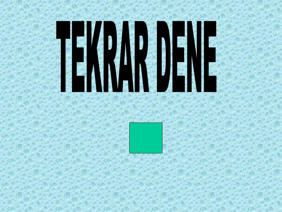 TEKRAR DENE