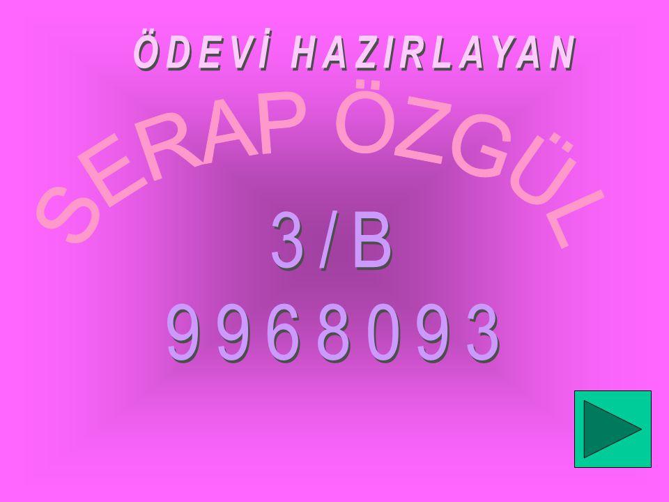 ÖDEVİ HAZIRLAYAN SERAP ÖZGÜL 3/B 9968093