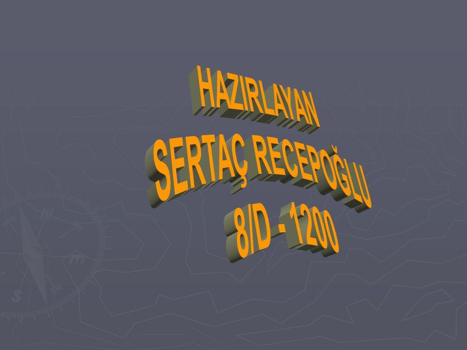 HAZIRLAYAN SERTAÇ RECEPOĞLU 8/D - 1200